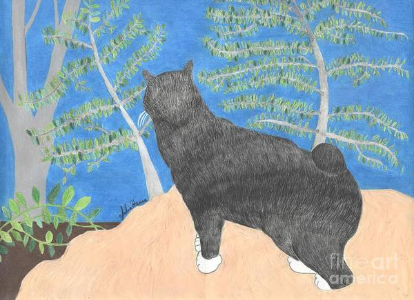 Manx Cat Wall Art - Drawing - Annie The Cat Looking Over The Hillside by Julia Hanna