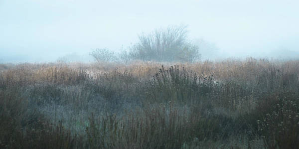 Photograph - Anonymous In Fog by Alexander Kunz