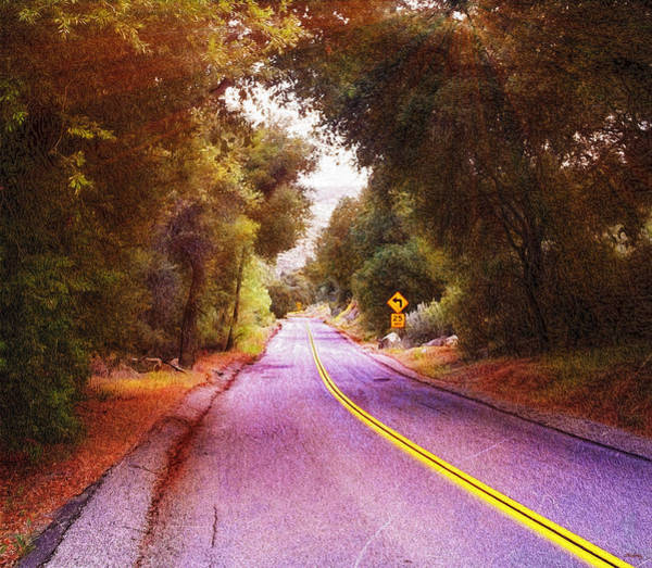 Photograph - Another Bend In The Road by Glenn McCarthy Art and Photography