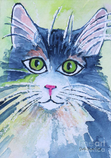 Wall Art - Painting - Another Cat by Jutta Maria Pusl