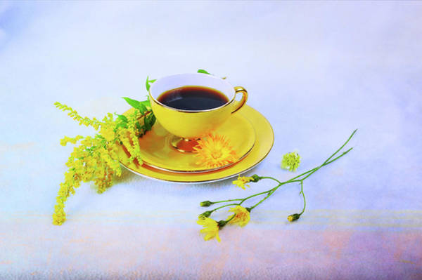 Photograph - Another Cup Of Coffee by Randi Grace Nilsberg