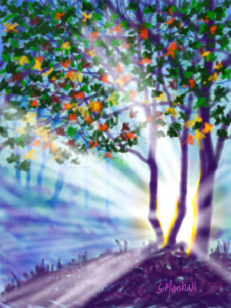 Painting - Another Lightburst by Glenn Marshall