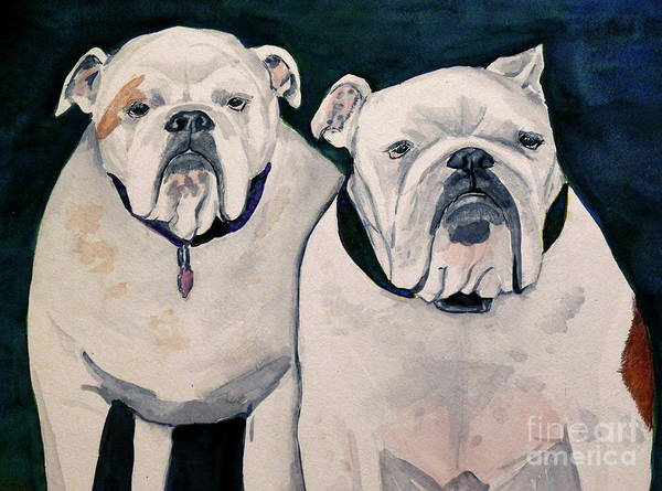 English Bulldog Painting - Another Pair Of English Bulldogs by Amy Pilafas