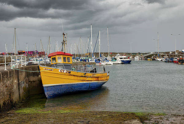 Photograph - Anstruther Marina In Fife by Jeremy Lavender Photography