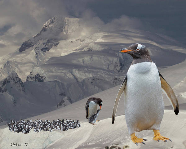 Photograph - Antarctic Magesty by Larry Linton
