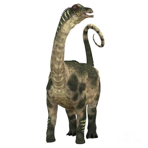 Vertebrate Painting - Antarctosaurus Over White by Corey Ford