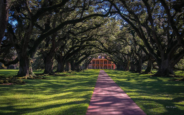 Photograph - Antebellum  by Tim Bryan