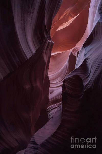 Photograph - Antelope Canyon Flood Art by Mae Wertz