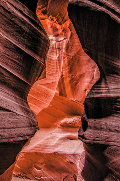 Photograph - Antelope Canyon  by Teresa Wilson