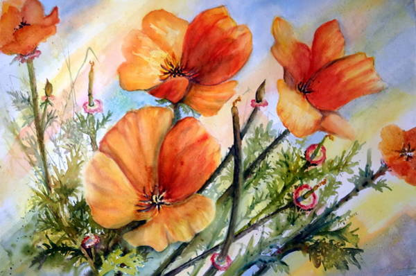Painting - Antelope Valley Poppy Fields by Anna Jacke