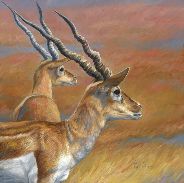 Painting - Antelopes by Lucie Bilodeau