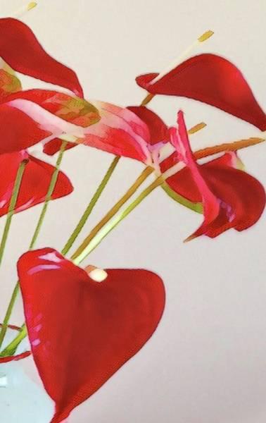 Anthurium Fragments In Red Art Print