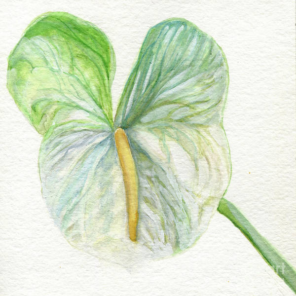 Painting - Anthurium by Laurie Rohner