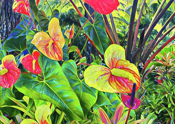 Anthuriums Yellow And Red Art Print