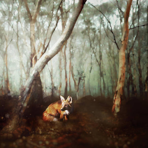 Foxes Digital Art - Anticipation by Katherine Smit