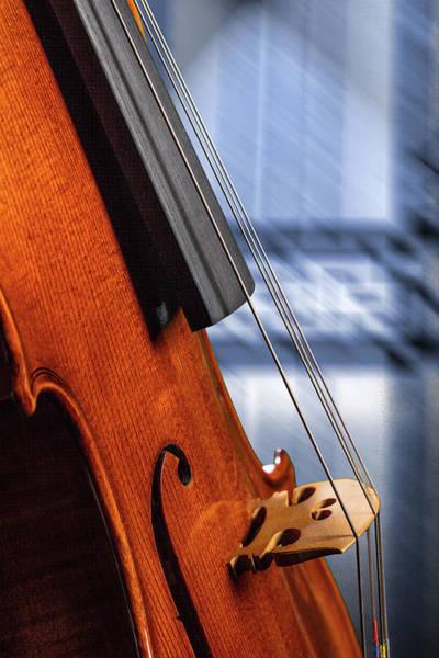 Photograph - Antique Violin 1732.62 by M K Miller
