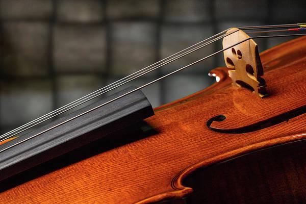 Photograph - Antique Violin 1732.64 by M K Miller