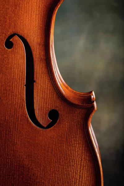 Photograph - Antique Violin 1732.65 by M K Miller