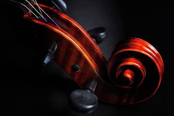 Photograph - Antique Violin 1732.68 by M K Miller