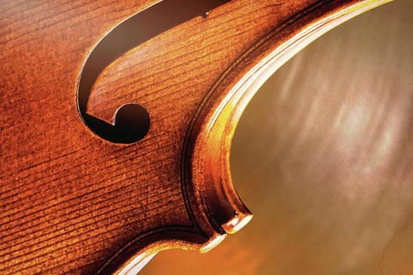 Photograph - Antique Violin 1732.71 by M K Miller