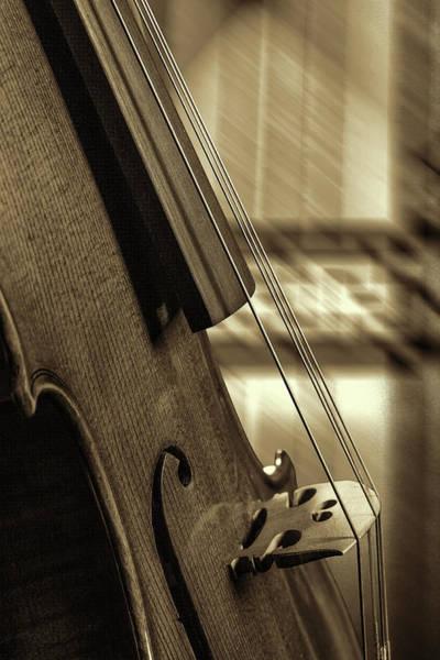 Photograph - Antique Violin 1732.72 by M K Miller