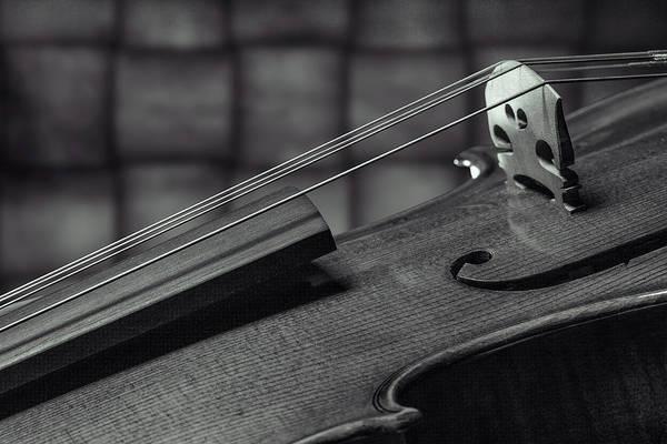 Photograph - Antique Violin 1732.75 by M K Miller