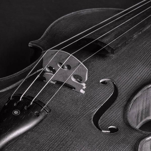 Photograph - Antique Violin 1732.78 by M K Miller