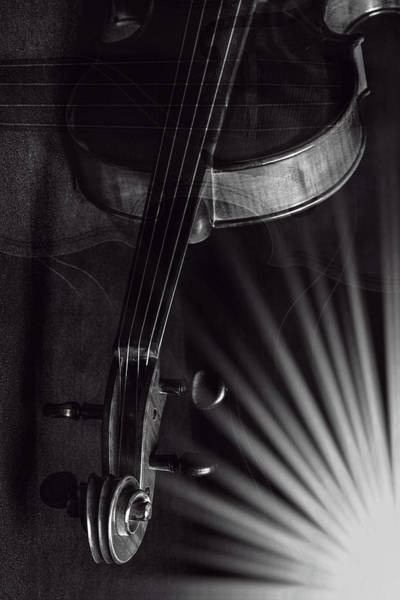 Photograph - Antique Violin 1732.81 by M K Miller