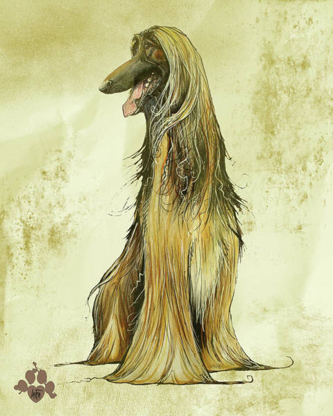 Hound Drawing - Antique Afghan Hound  by John LaFree