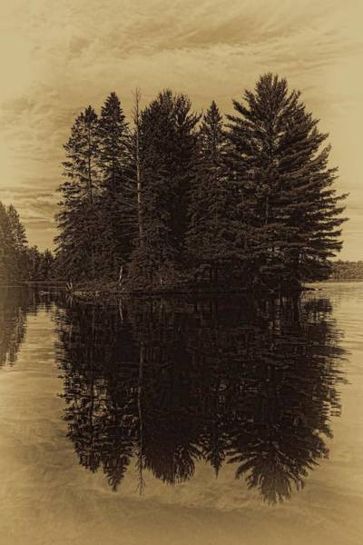 Photograph - Antique Boom Lake Pines by Dale Kauzlaric