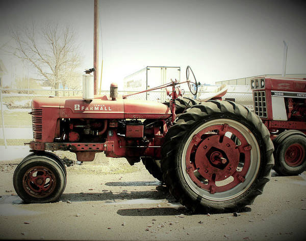 Wall Art - Photograph - Antique Farmall Tractor by Toni Grote