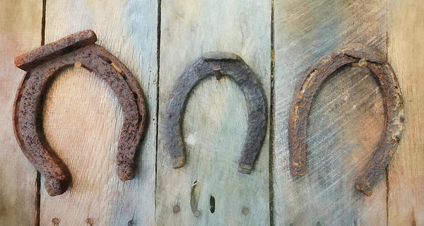 Wall Art - Photograph - Antique Horseshoes by Lori Deiter