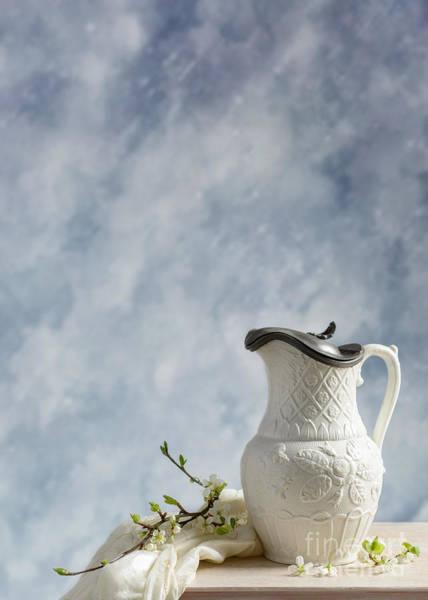 Blue Vase Photograph - Antique Lidded Jug by Amanda Elwell