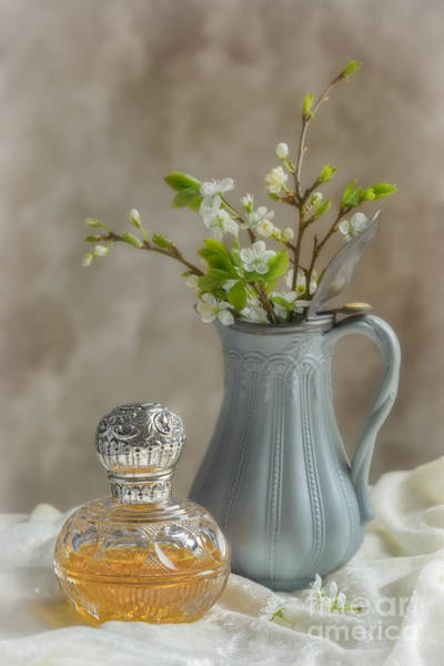 Scent Photograph - Antique Perfume Bottle by Amanda Elwell