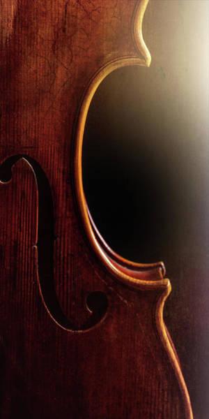 Photograph -  Antique Violin 1732.01 by M K Miller