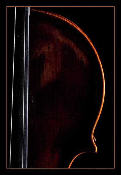 Photograph -  Antique Violin 1732.03 by M K Miller