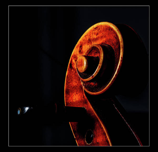 Photograph -  Antique Violin 1732.06 by M K Miller