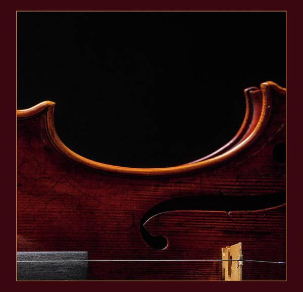 Photograph -  Antique Violin 1732.09 by M K Miller