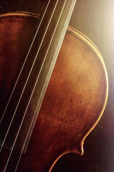 Photograph -  Antique Violin 1732.12 by M K Miller