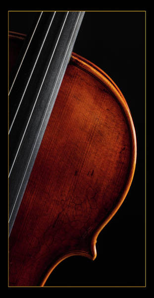 Photograph -  Antique Violin 1732.13 by M K Miller