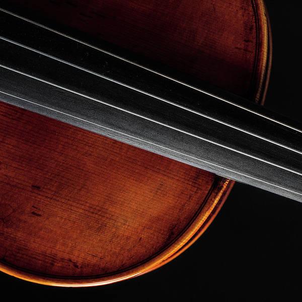 Photograph -  Antique Violin 1732.14 by M K Miller