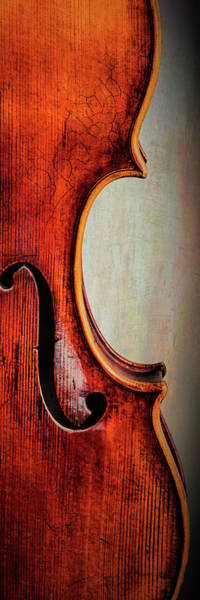 Photograph -  Antique Violin 1732.22 by M K Miller