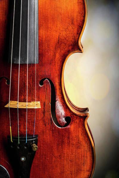 Photograph -  Antique Violin 1732.23 by M K Miller