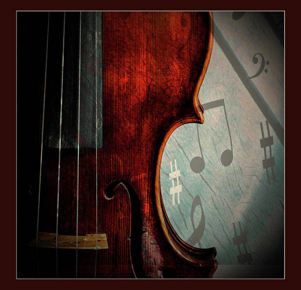 Photograph -  Antique Violin 1732.25 by M K Miller