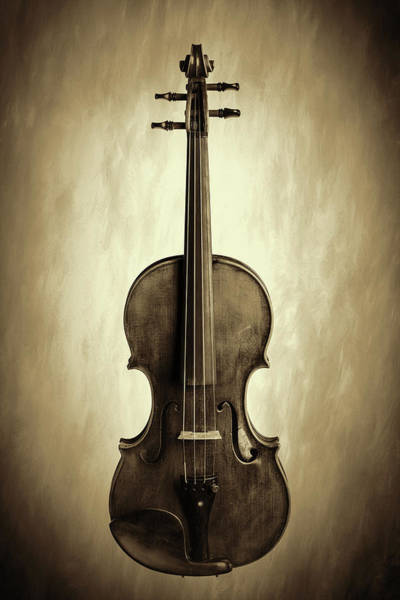Photograph -  Antique Violin 1732.27 by M K Miller