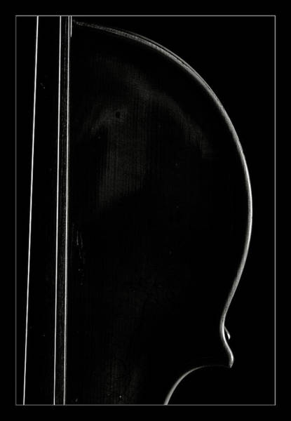 Photograph -  Antique Violin 1732.28 by M K Miller