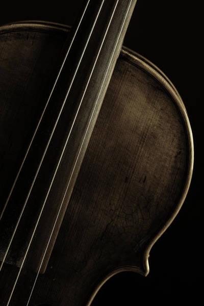 Photograph -  Antique Violin 1732.30 by M K Miller