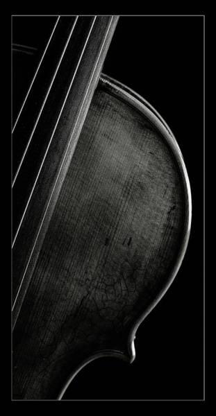 Photograph -  Antique Violin 1732.31 by M K Miller