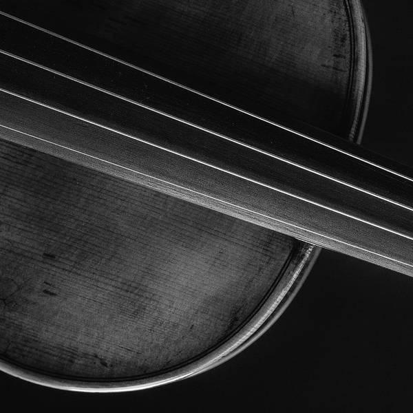 Photograph -  Antique Violin 1732.32 by M K Miller