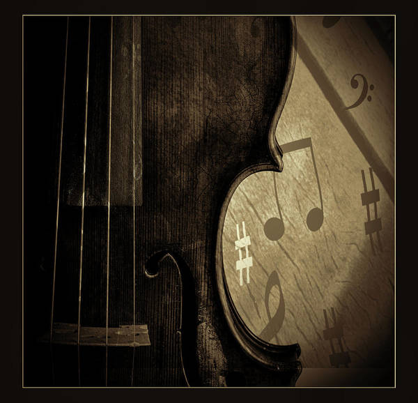 Photograph -  Antique Violin 1732.36 by M K Miller